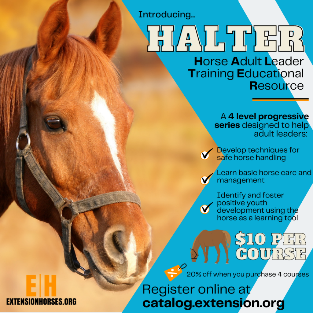 Horse Adult Leader Training Educational Resources